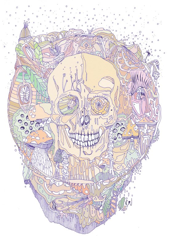 floral binomial & bone Art Print