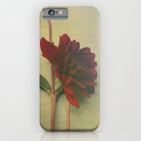 iPhone & iPod Case featuring Whispers of Love by Olivia Joy StClaire