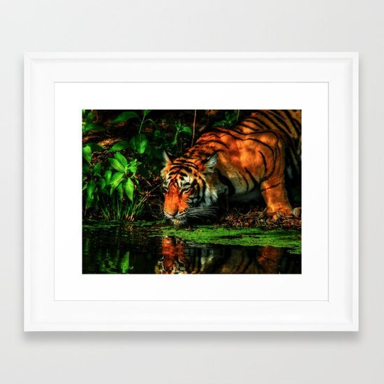 Paying Homage To The Jungle King Framed Art Print
