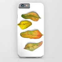 iPhone & iPod Case featuring Crandall Park Specimen no. 3 by Reneé Leigh Stephenson