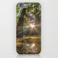 Woodland Pond Sunset iPhone 6 Slim Case