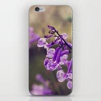 Mona Lavender iPhone & iPod Skin