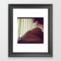 Storming the Cat-sle Framed Art Print
