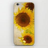Kansas iPhone & iPod Skin
