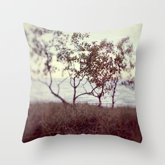 The Coast #2 Throw Pillow