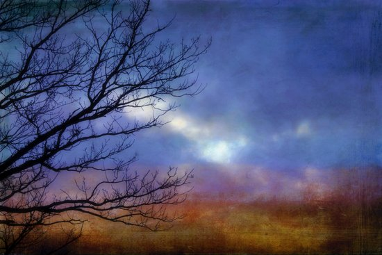 Mysterious  - JUSTART © Art Print