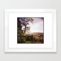 Tree and Stile Framed Art Print