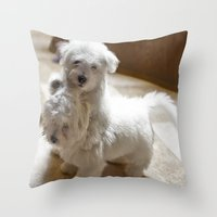 What? Do I have to stop! Throw Pillow