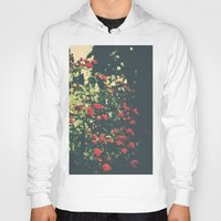 Summer Roses Series  - I… Hoody