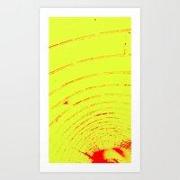 529 Art Print