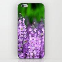 Salvia iPhone & iPod Skin