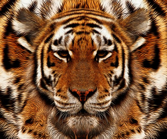 camouflage tiger Canvas Print