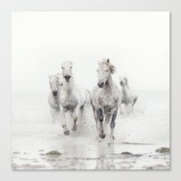 Ghost Riders - Horse Art Canvas Print