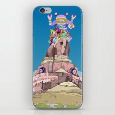 BEN LESSA SATINI iPhone & iPod Skin