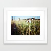 Daisy Chain Framed Art Print
