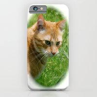 iPhone & iPod Case featuring Max by kyleray3000
