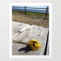 flower by the sea Art Print