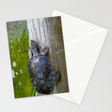 Hero in a Half Shell Stationery Cards