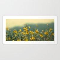 Flowerfield Art Print
