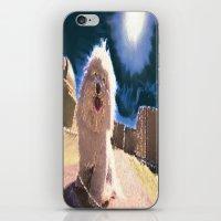 Coton de Tulear iPhone & iPod Skin