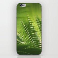 The Green Light #4 iPhone & iPod Skin