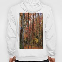 Sometimes the Trees Scream Hoody