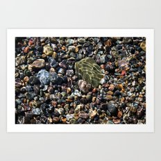 pool of pebbles  Art Print