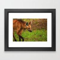 Wolf Strut Framed Art Print
