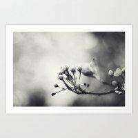 Spring II in Sepia Art Print