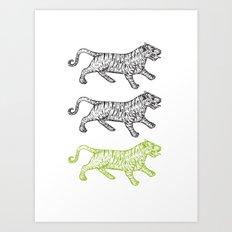 Three Tigers Art Print