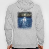 Dolphins, Civilization. Hoody