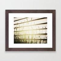 Lavender love Framed Art Print