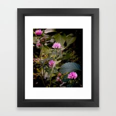(c)lover of the shadow Framed Art Print