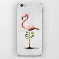 Planted (Wordless) iPhone & iPod Skin