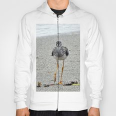 Greater Yellowlegs (Sandpiper) Looking at Camera  Hoody