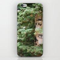 WRITTEN IN THE TREES iPhone & iPod Skin