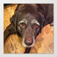 Custom Order for Debbe Batterton - Labrador Canvas Print