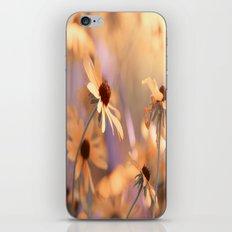 Suns star in the autumn garden iPhone & iPod Skin