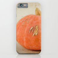 iPhone & iPod Case featuring Little Squash by Katie Kirkland Photography
