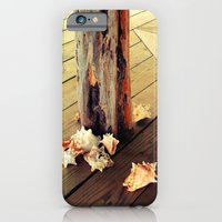 iPhone & iPod Case featuring Belizean Shells by shari hochberg