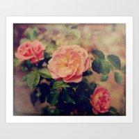 Flashback Roses  Art Print