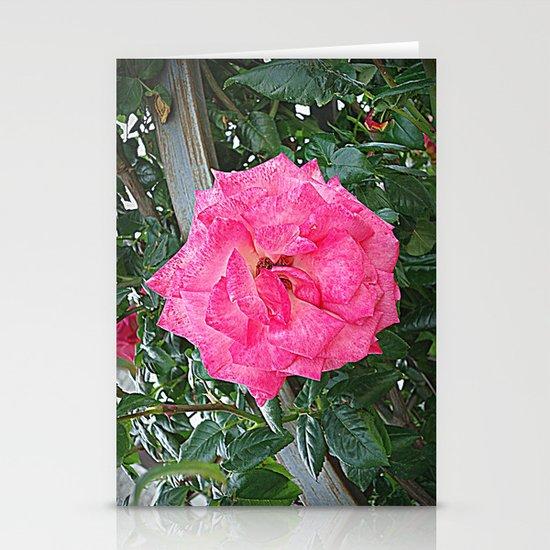 rosa rosa Stationery Card