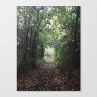 Natures Path Canvas Print