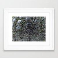 Waterflower Framed Art Print