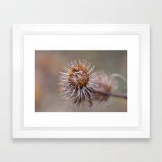 The Thorns Framed Art Print