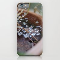 water's web iPhone 6 Slim Case