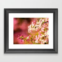 Pretty and Pink crab apple blossoms Framed Art Print