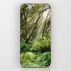 In the Forest iPhone & iPod Skin