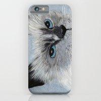 Siamese Cat iPhone 6 Slim Case