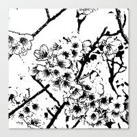 Cherry Blossom #2 Canvas Print